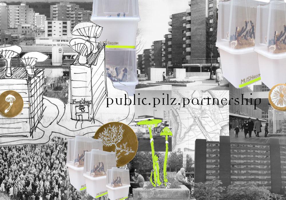 http://www.fungutopia.org/files/gimgs/14_pppweb.jpg