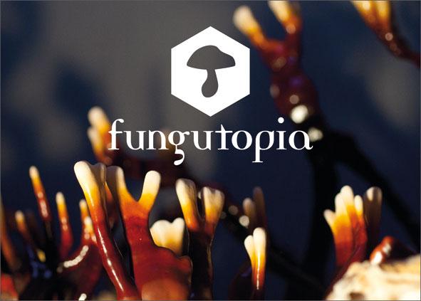 http://www.fungutopia.org/files/gimgs/19_karte-fungu-web.jpg